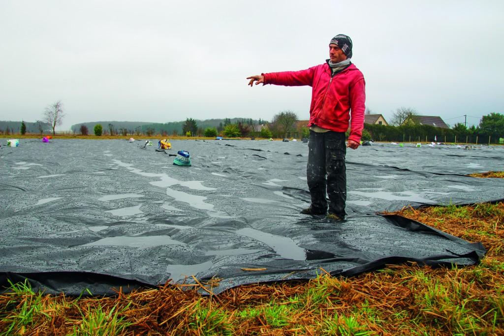 En posant ses bâches sur l'herbe durant de longues périodes, Joris Gunsburger utilise une méthode de désherbage naturelle. Il a choisi l'agriculture de conservation des sols.