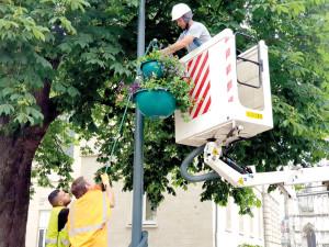 Plus de deux cent suspensions décorent la ville pour 4 jours de pose.