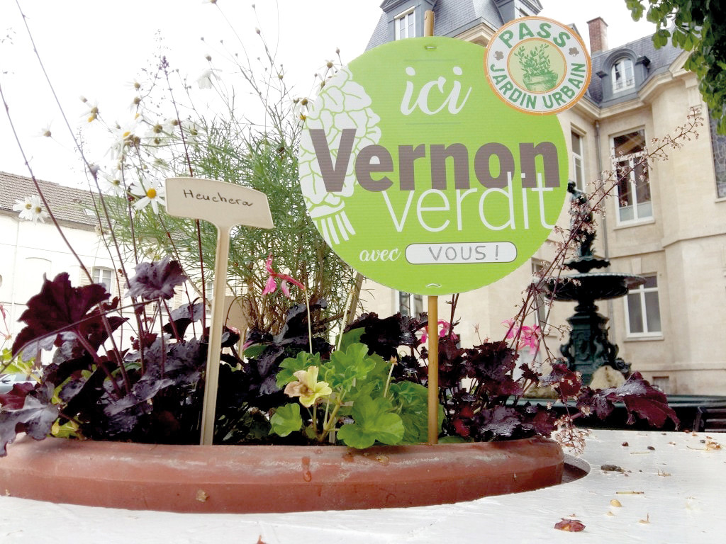 Vernon Verdit