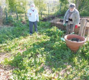 Démocratie Participative Du jardin à l_Assiette Jardin Partagé Potager Intergénérationnel Développement Durable Alimentation