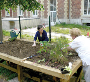 L'atelier « du jardin à l'assiette » permet de manger sain tout en gardant la forme physique grâce au jardinage.