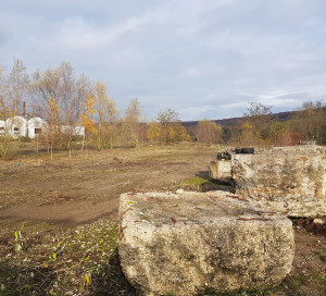 Le site a entièrement été débroussaillé à l'exception de certains arbres qui seront intégrés dans le futur parc.