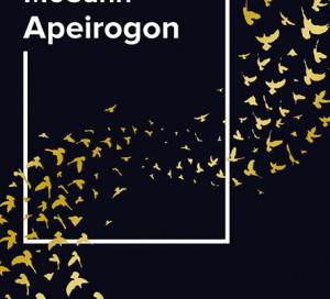 Le Livre du Mois Apeirogon Colum McCann Médiathèque de Vernon