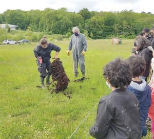 Moutons Béliers Boutardes Tonte Ecopâturage Chèvres Enfants CLAS Centre Social Pénitents