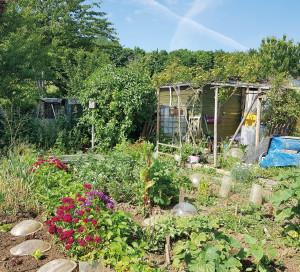 Jardins Familiaux Prix 2021 du plus beau jardin belle girouette Valmeux