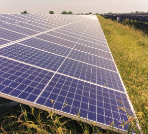 Solar power plant, solar panel array, solar modules surrounded by green grass Renewable, clean energy, alternative energy from nature.
